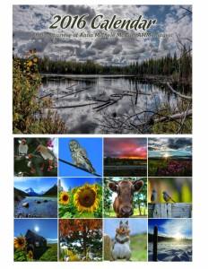 My Project calendar summary